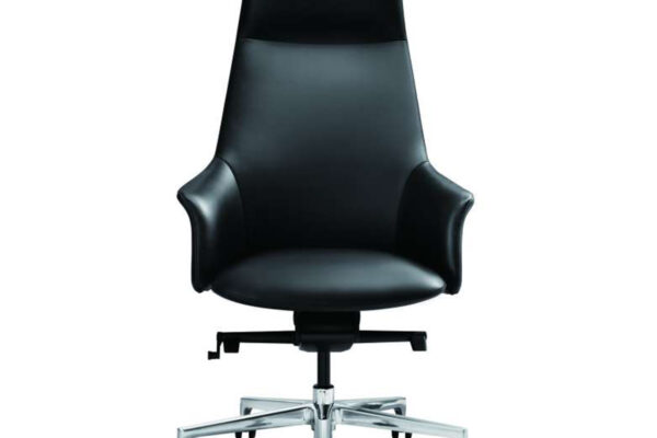 8 - Rhythm - α Executive Leather Chair in Carbon Black